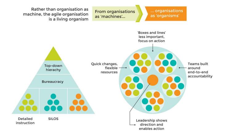 Trademarks of agile organisations